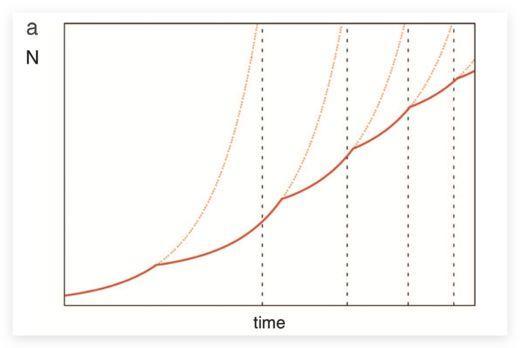 为何生活节奏越来越快?因为城市是一台不断加速的跑步机-集智俱乐部