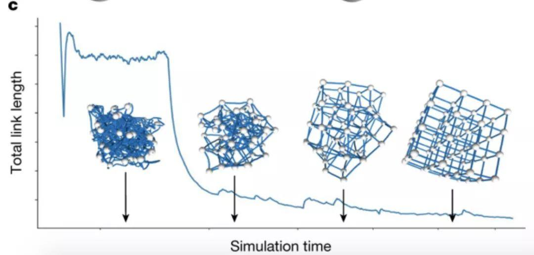 Barabási组最新Nature封面文章:复杂网络如何3D打印?-集智俱乐部