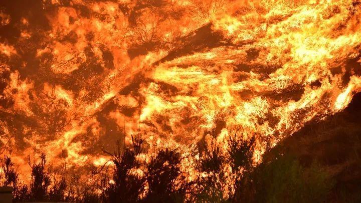 野火发生规律:从时空数据到时序网络 | 网络科学论文速递4篇-集智俱乐部