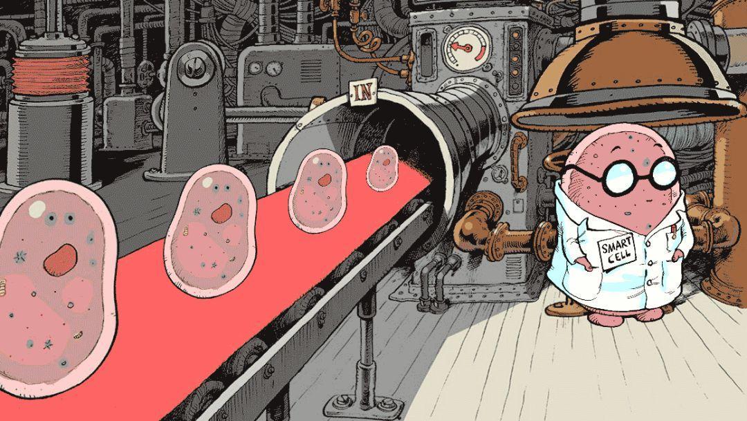 Nature重磅:用活细胞搭建逻辑电路——调控细胞功能的跨学科之旅-集智俱乐部
