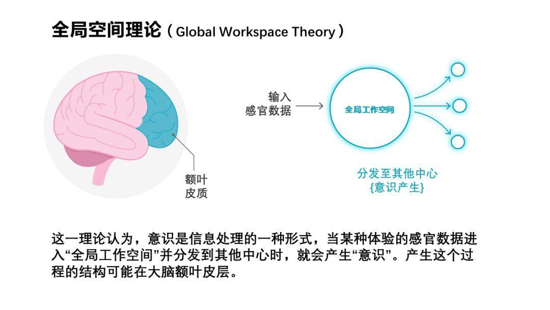 意识谜题揭开前夜:是源于信息处理过程?还是神经网络内在属性?-集智俱乐部