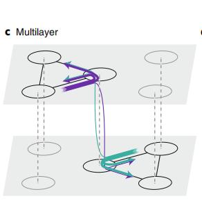 复杂网络升阶指南:如何构建最优网络模型-集智俱乐部