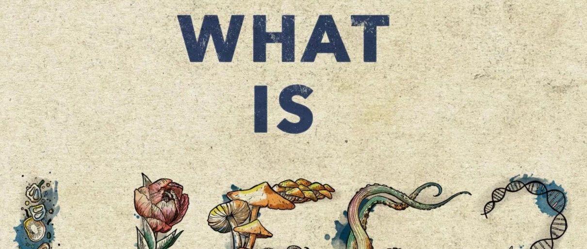 张江:从复杂科学视角,追问生命是什么