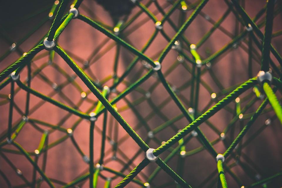 Nature通讯:基于先验知识的网络推断