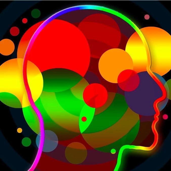 Physics Reports研究速递:大脑复杂网络动力学下的创造和意识