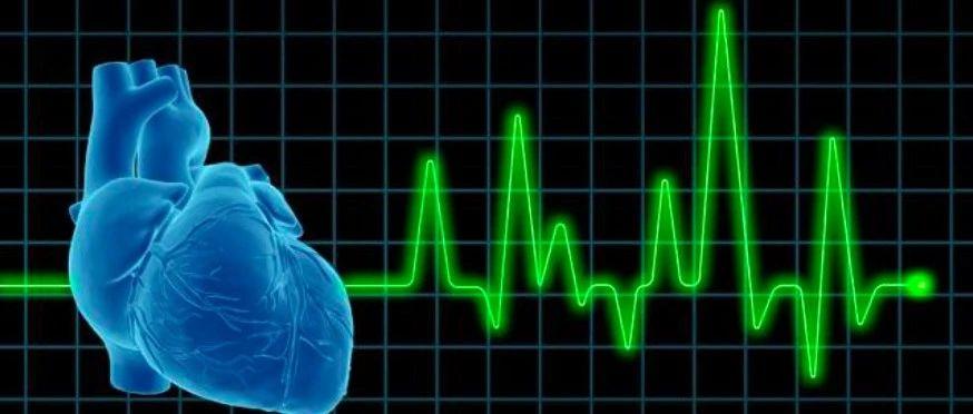 研究速递:用深度学习对人体心血管衰老速率自动建模